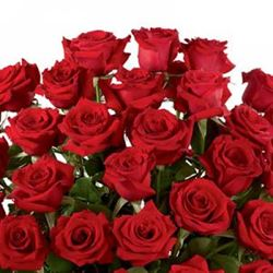 How Many Red Roses Should I Buy?