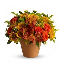 Recommended Thanksgiving Flower Bouquets