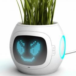 Digital Pot turns your plants into pets